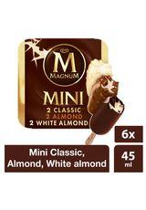 Ice Cream Magnum Mini